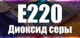 Безопасно ли употреблять продукты с диоксидом серы (Е220)